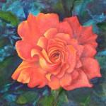 Rosa naranja espacial